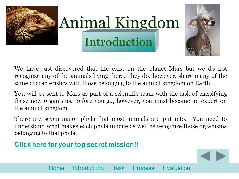 Image of: Laminated Animal Kingdom Slideplayer Animal Kingdom Webquest For 7th Grade Life Science Designed By