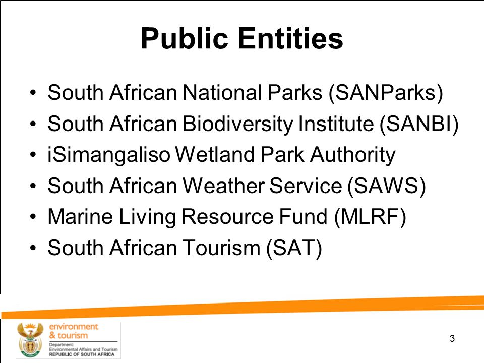 Image result for Public Entities south africa