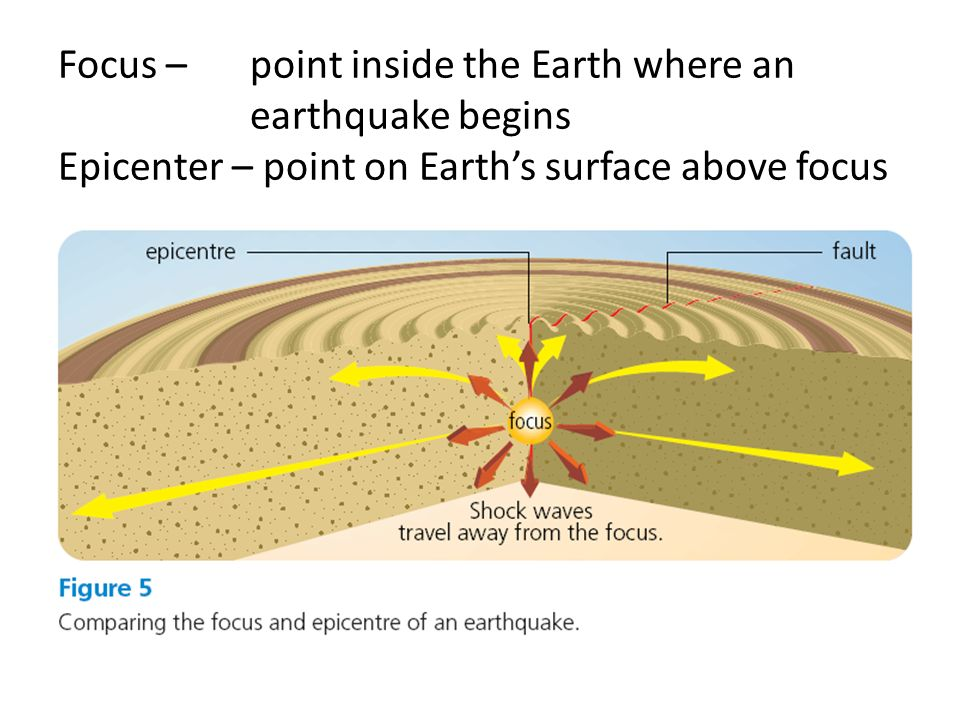 Focus – point inside the Earth where an earthquake begins Epicenter – point on Earth's surface above focus