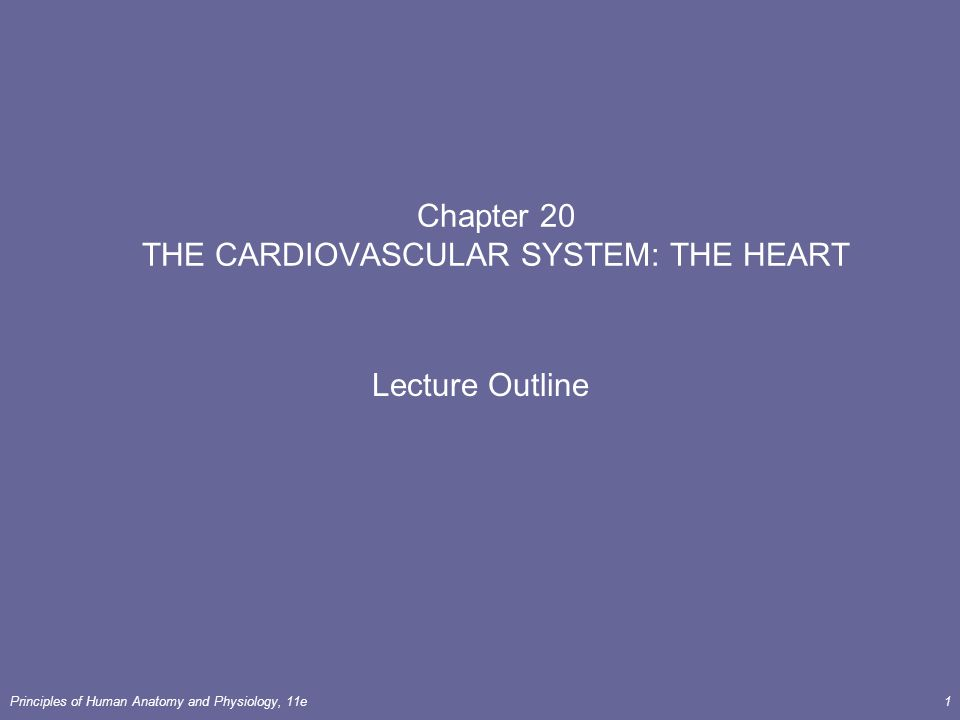 Principles of Human Anatomy and Physiology, 11e1 Chapter 20 THE ...