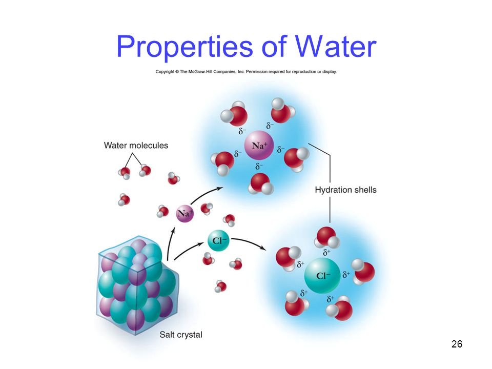 26 Properties of Water