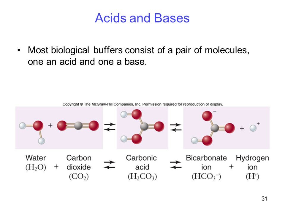 31 Acids and Bases Most biological buffers consist of a pair of molecules, one an acid and one a base.