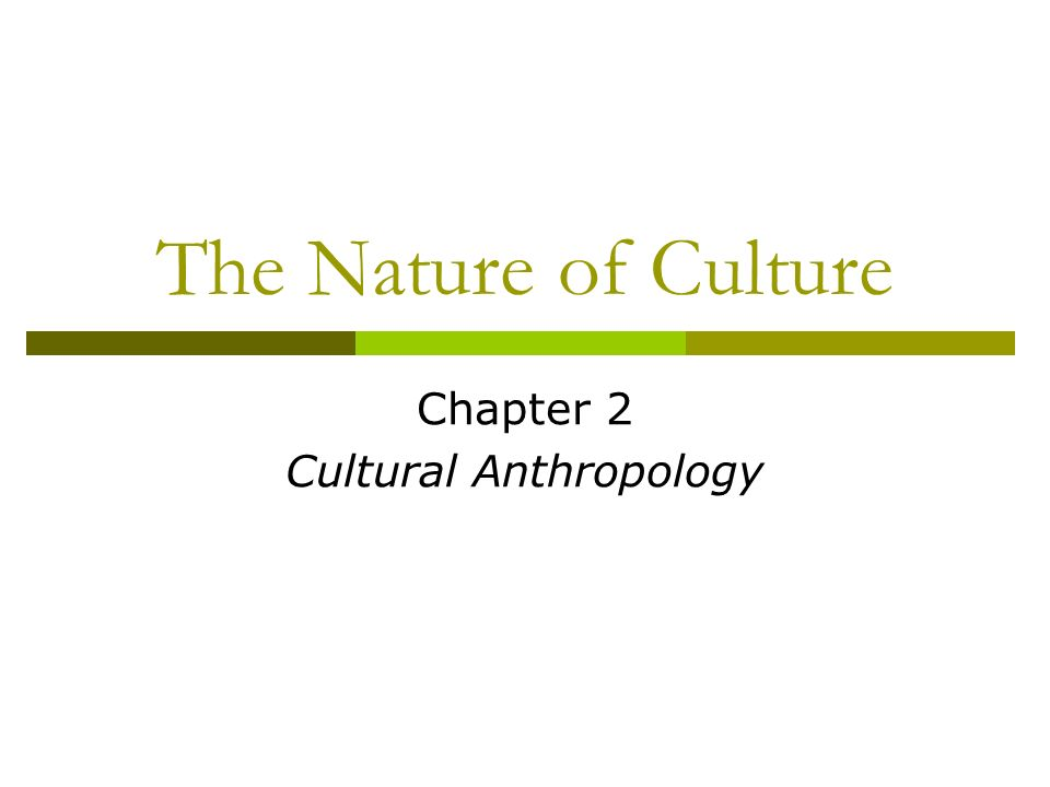 the nature of culture essay The importance of values and culture in ethical decision making authored by: christine chmielewski 2004 ethical standards are the standards of our environment that are acceptable to most people.