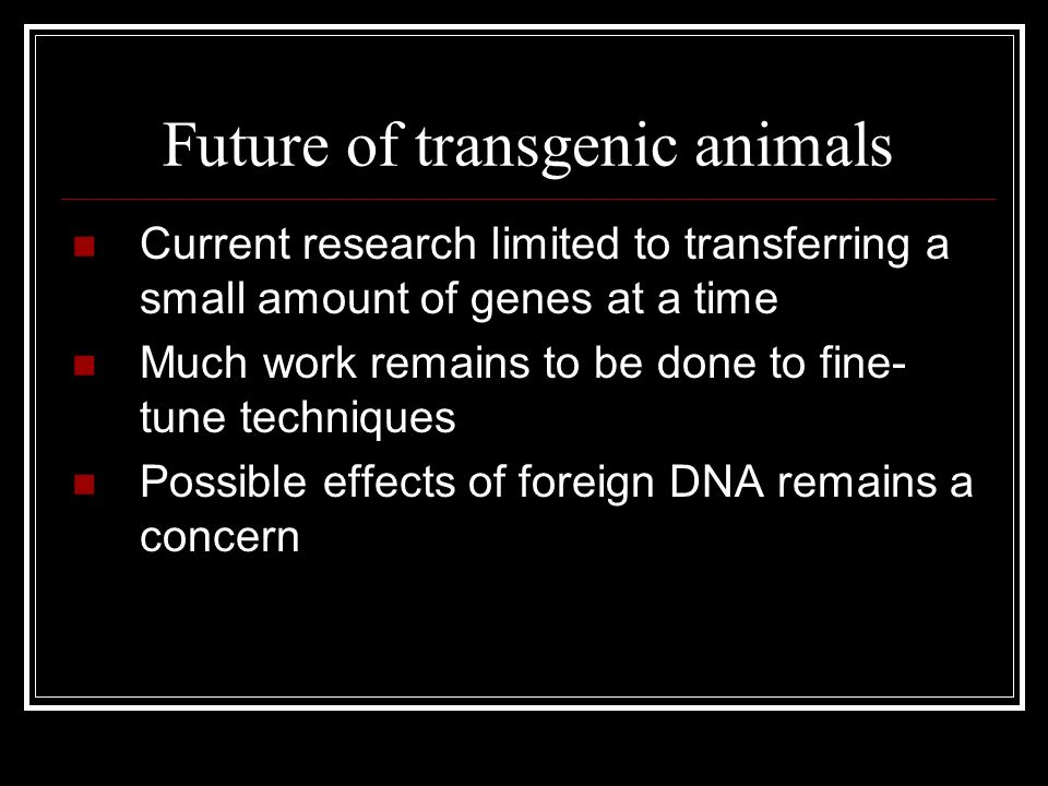 transgenic animals are currently used ______