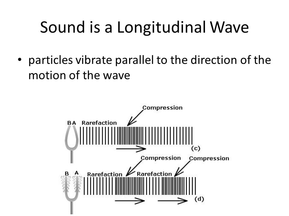 2 Sound Is A Longitudinal Wave Particles Vibrate Parallel To The Direction Of Motion