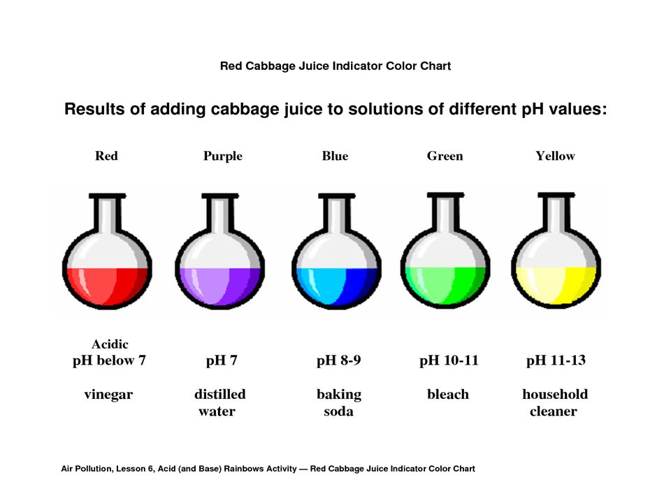 Red Cabbage Ph Indicator The Purpose Of This Experiment Is To Show