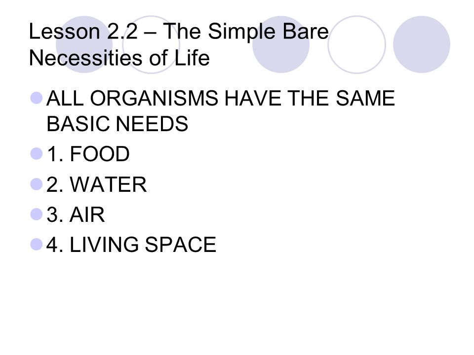 568160503c0 Lesson 2.2 – The Simple Bare Necessities of Life ALL ORGANISMS HAVE THE  SAME BASIC NEEDS