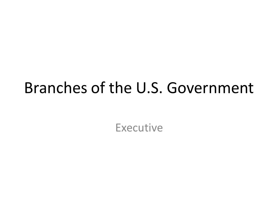 Branches of the U.S. Government Executive