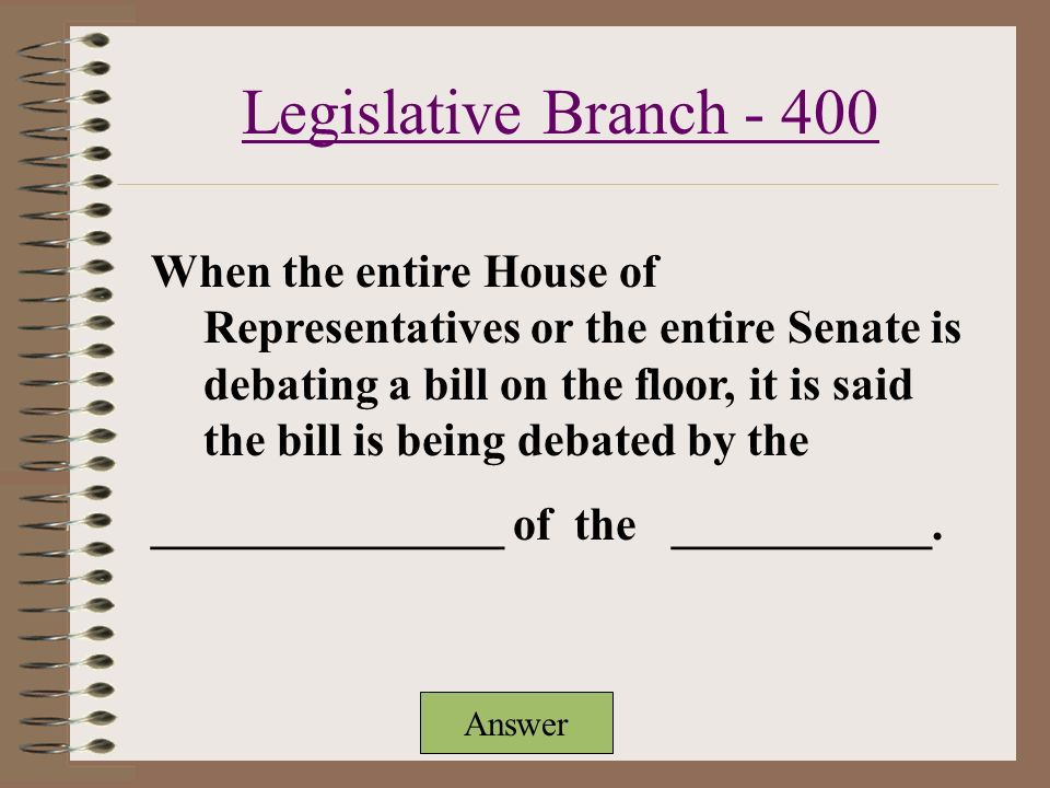 Executive Branch Judicial Branch Legislative Branch Mixed Bagwho Am