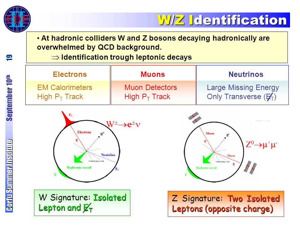 Electrons EM Calorimeters High P T Track W/Z Identification Corfu Summer Institute Corfu Summer Institute September 10 th 19 At hadronic colliders W and Z bosons decaying hadronically are overwhelmed by QCD background.