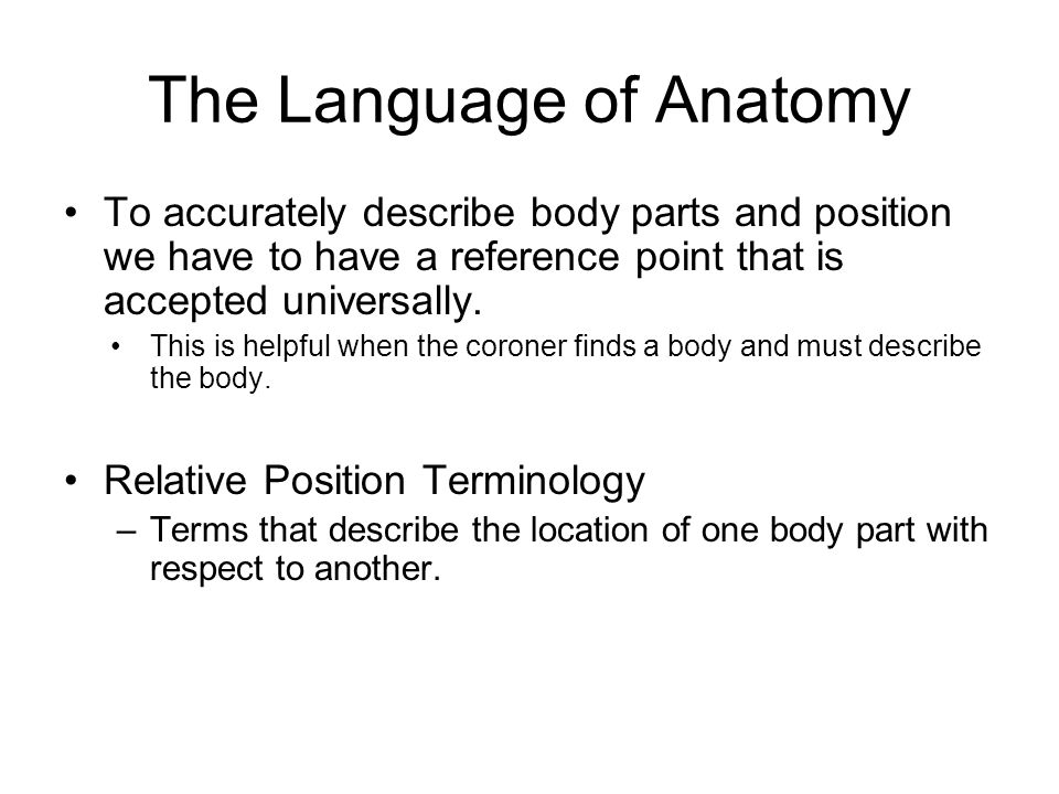 The Language of Anatomy To accurately describe body parts and position we have to have a reference point that is accepted universally.