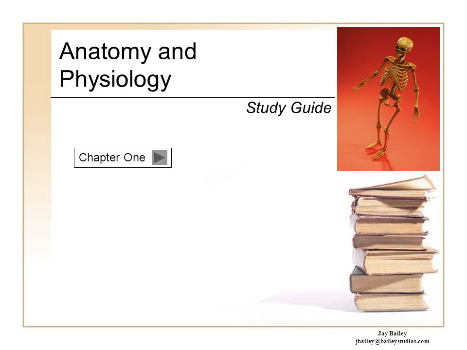 Chapter One Anatomy and Physiology Study Guide Jay Bailey - ppt download
