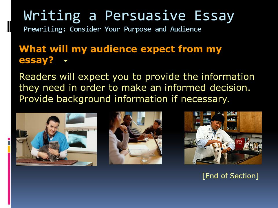 Writing a Persuasive Essay Prewriting: Consider Your Purpose and Audience What will my audience expect from my essay.
