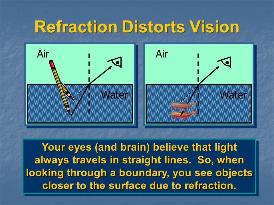 Reflection, Refraction, and Absorption REFLECTION occurs when a ray from one medium strikes the boundary and bounces off.