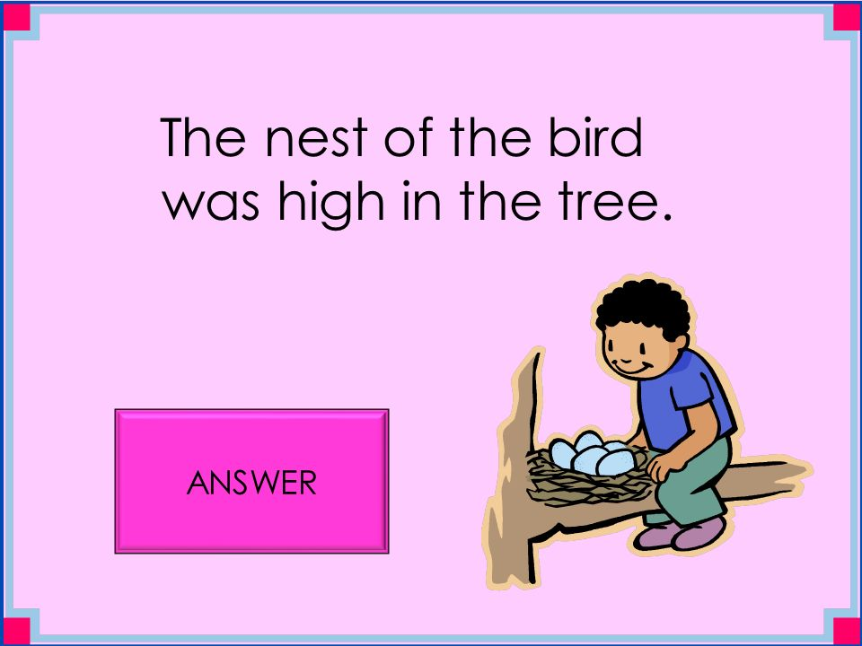 The nest of the bird was high in the tree. ANSWER