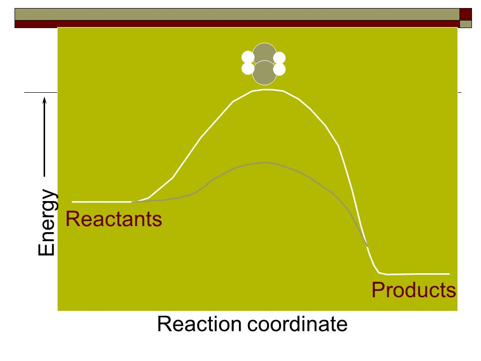5) Catalyst Substance not part of the reaction but makes the reaction faster by lowering the activation energy