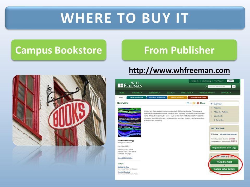 Ready to get started online study tools for molecular biology 1 st 3 from publisher httpwhfreeman where to buy it campus bookstore fandeluxe Choice Image