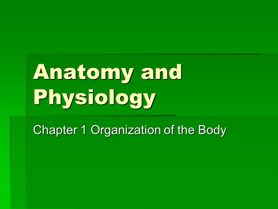 Anatomy and Physiology Chapter 1 Organization of the Body. - ppt ...