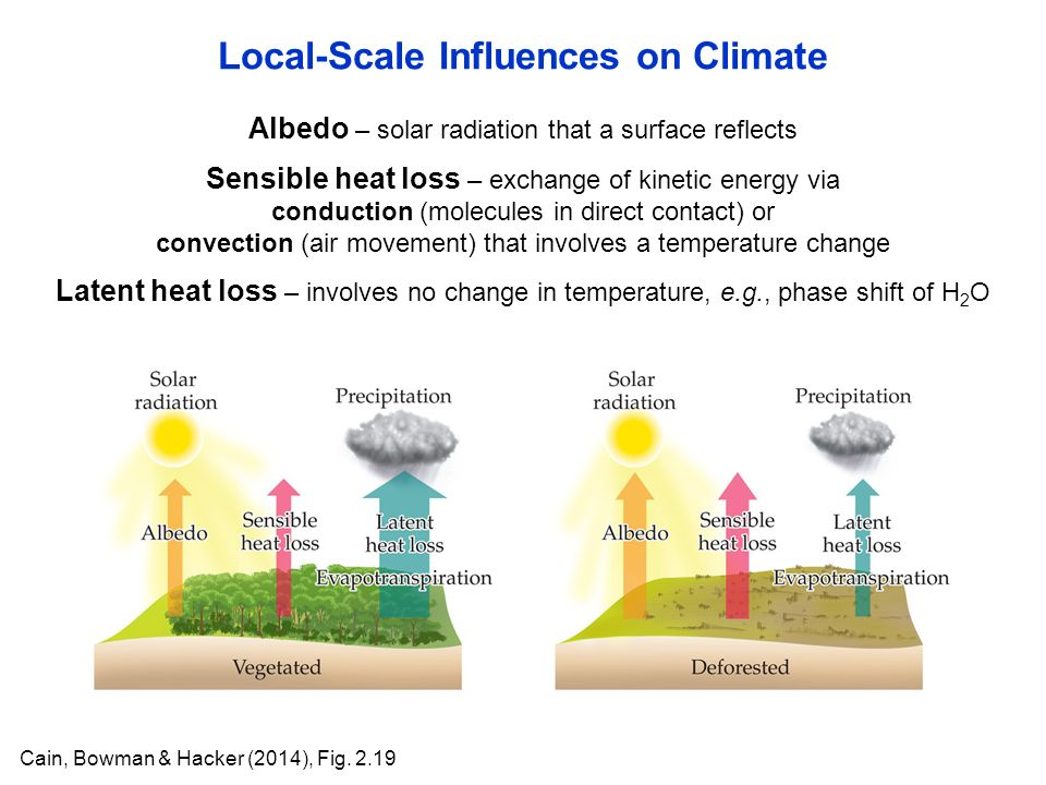 Albedo – solar radiation that a surface reflects Local-Scale Influences on Climate Cain, Bowman & Hacker (2014), Fig.