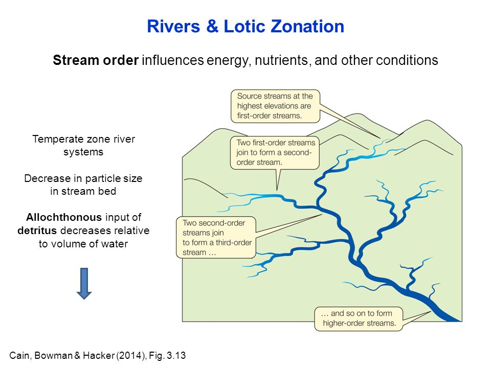 Stream order influences energy, nutrients, and other conditions Rivers & Lotic Zonation Cain, Bowman & Hacker (2014), Fig.