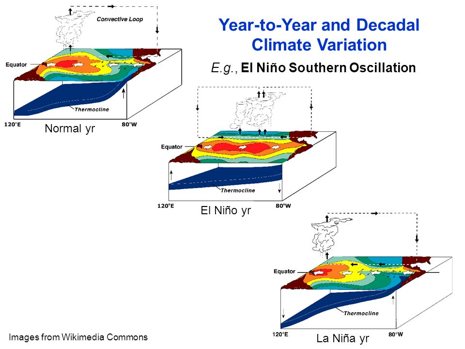 E.g., El Niño Southern Oscillation Images from Wikimedia Commons Year-to-Year and Decadal Climate Variation Normal yr El Niño yr La Niña yr