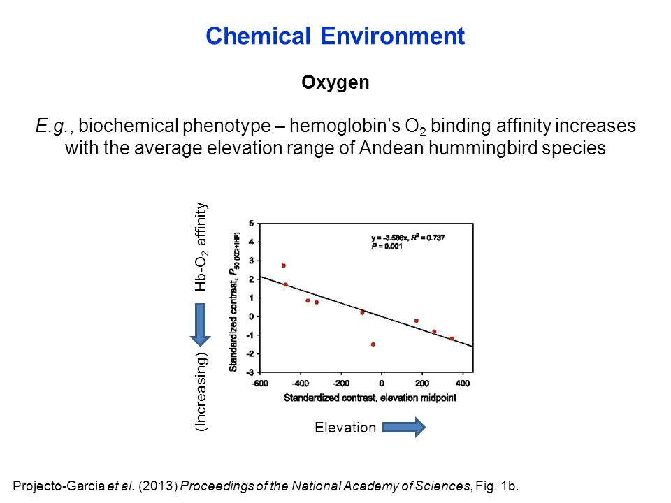 Oxygen Chemical Environment Projecto-Garcia et al.