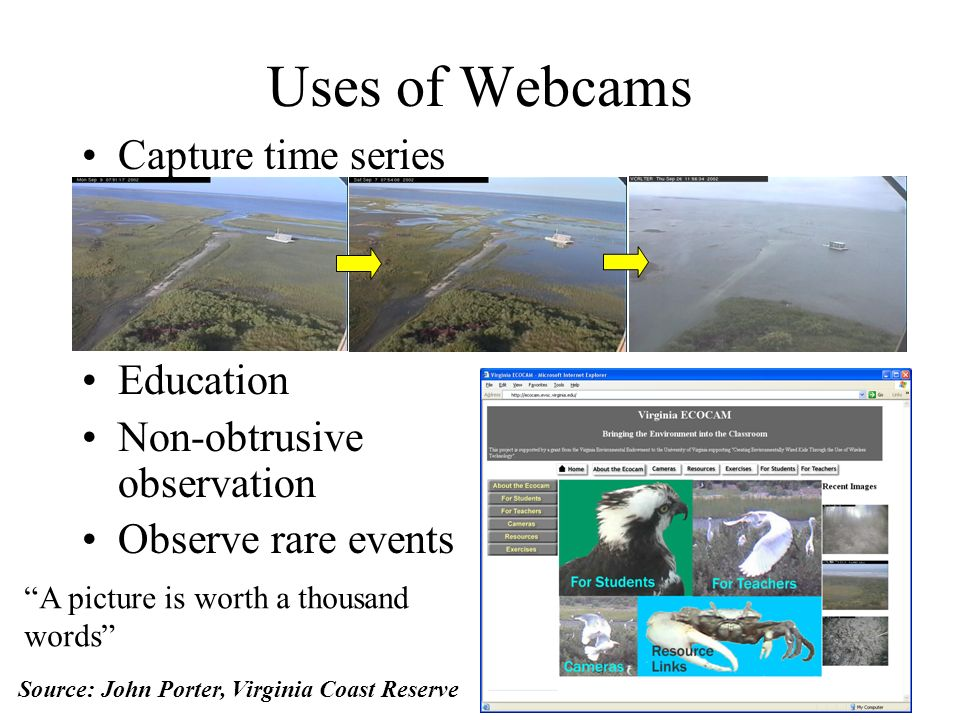 Uses of Webcams Capture time series Education Non-obtrusive observation Observe rare events A picture is worth a thousand words Source: John Porter, Virginia Coast Reserve