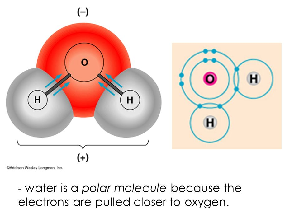 Covalent bonds- Two atoms share one or more pairs of outer- shell electrons.