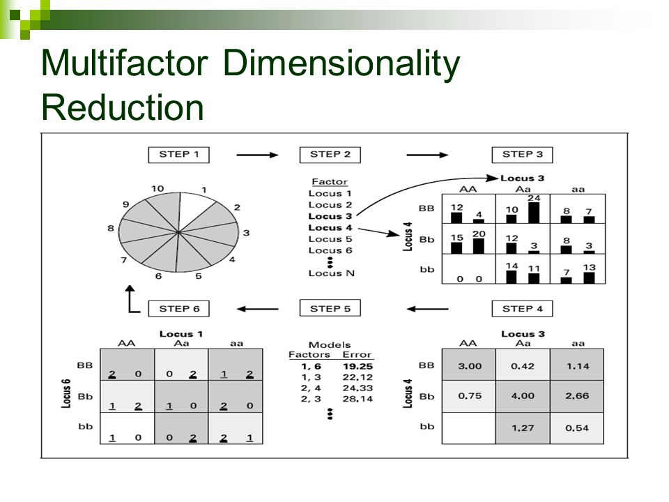Multifactor Dimensionality Reduction Laura Mustavich
