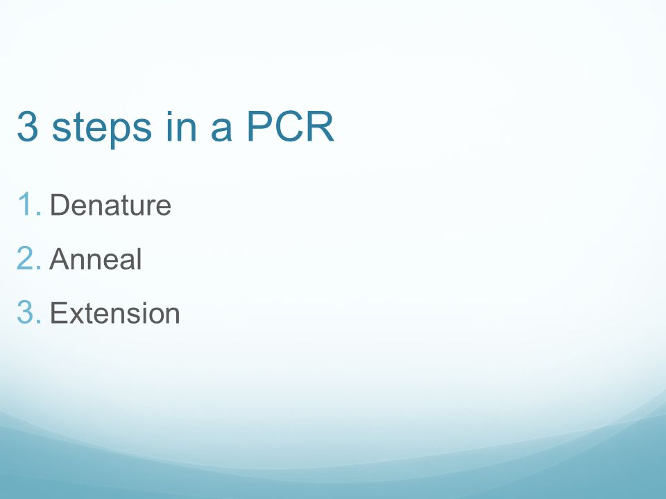 3 steps in a PCR 1. Denature 2. Anneal 3. Extension