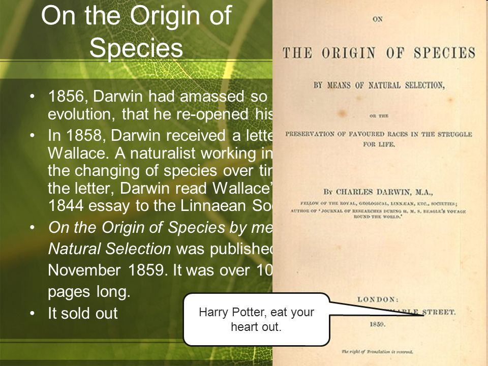 charles darwin evolution essay The life of charles darwin essay 777 words - 4 pages , in 1839 and lived in london for about three years in 1842 he moved to downe, kent, where he was constantly ill with a sickness believed to have been transmitted by insects in argentinain 1856, darwin began to write his theories on evolution and natural selection.