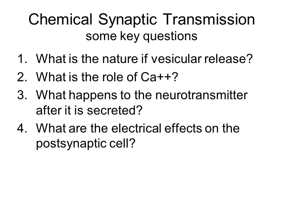 Chemical Synaptic Transmission some key questions 1.What is the nature if vesicular release.