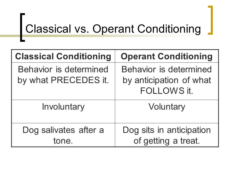 learning classical and operant conditioning