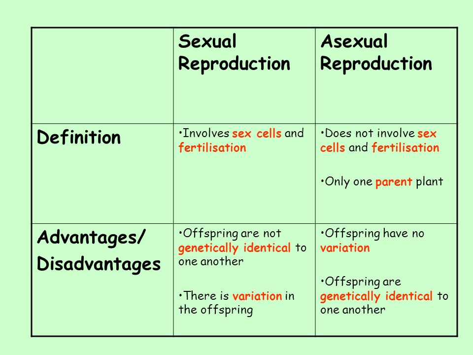 Asexual reproduction a level biology