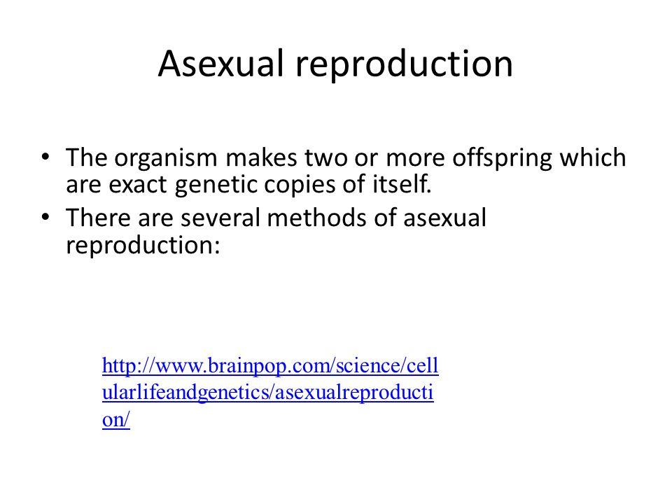 Asexual reproduction brainpop login