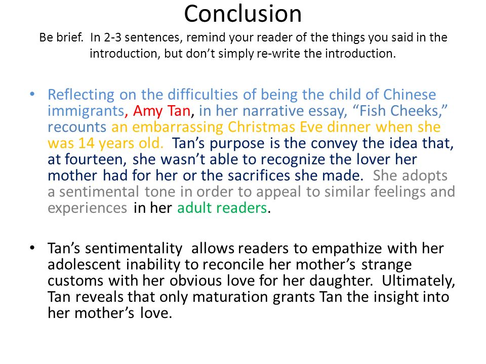 fish cheeks by amy tan analysis