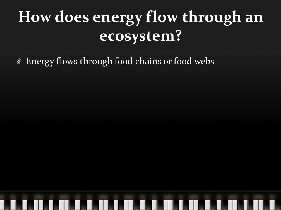 Energy flows through food chains or food webs