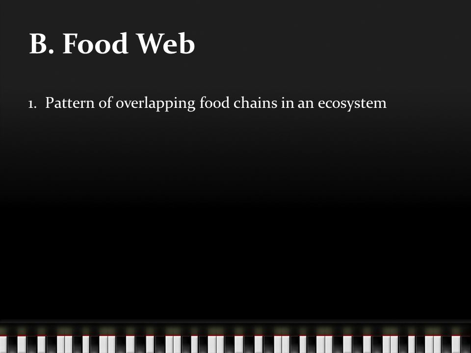1. Pattern of overlapping food chains in an ecosystem