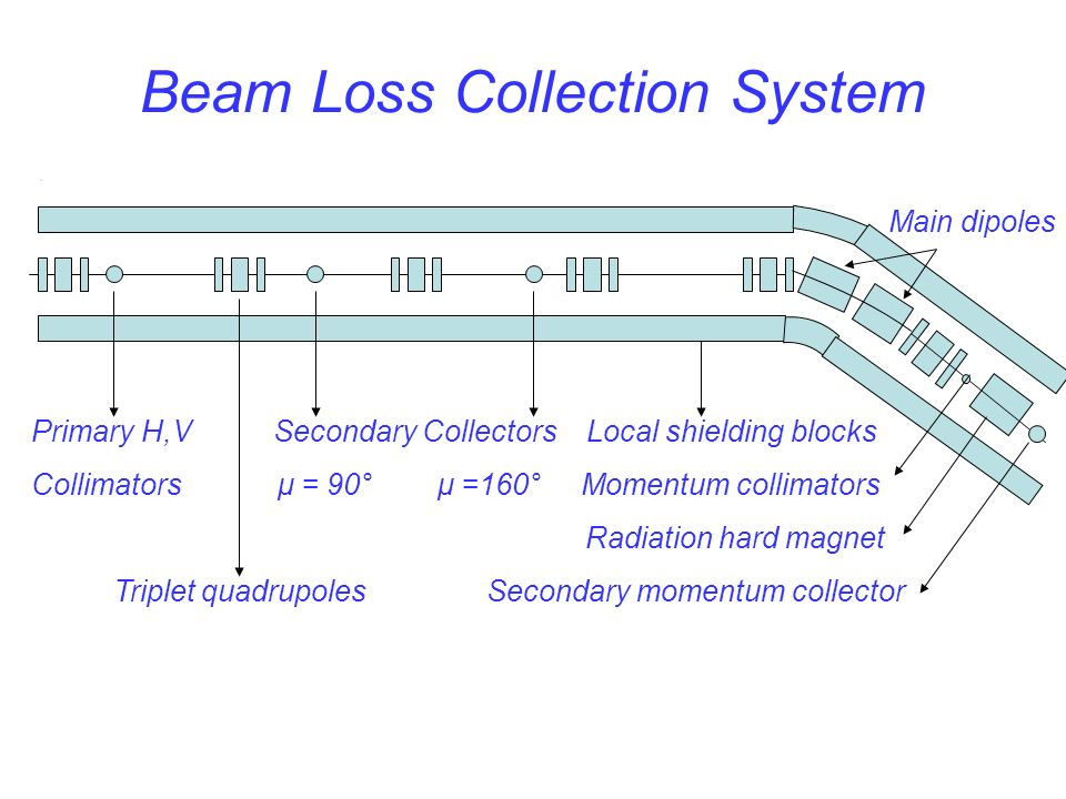 Beam Loss Collection System.