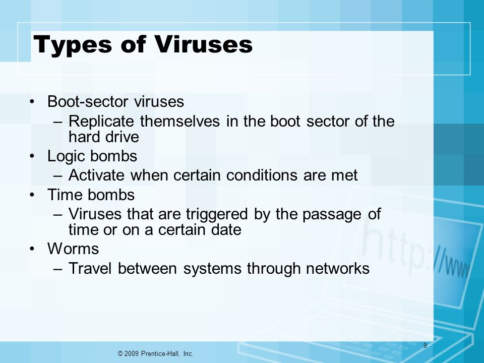 Types of Viruses Boot-sector viruses –Replicate themselves in the boot sector of the hard drive Logic bombs –Activate when certain conditions are met Time bombs –Viruses that are triggered by the passage of time or on a certain date Worms –Travel between systems through networks © 2009 Prentice-Hall, Inc.