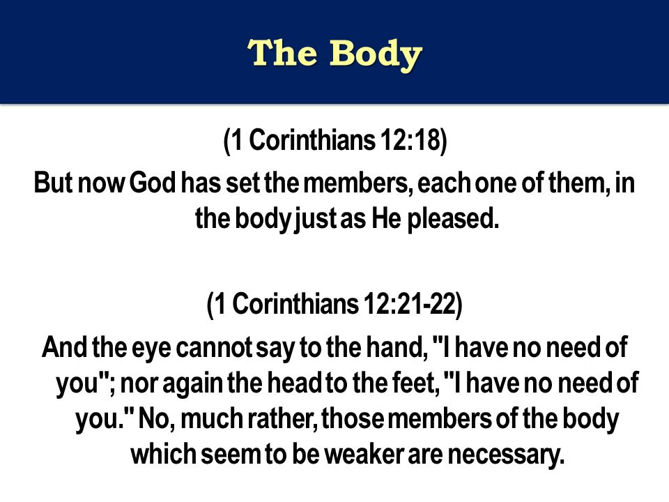 The Body (1 Corinthians 12:18) But now God has set the members, each one of them, in the body just as He pleased.