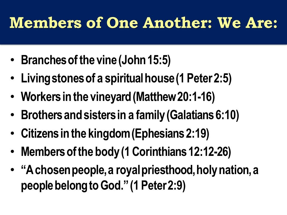 Members of One Another: We Are: Branches of the vine (John 15:5) Living stones of a spiritual house (1 Peter 2:5) Workers in the vineyard (Matthew 20:1-16) Brothers and sisters in a family (Galatians 6:10) Citizens in the kingdom (Ephesians 2:19) Members of the body (1 Corinthians 12:12-26) A chosen people, a royal priesthood, holy nation, a people belong to God. (1 Peter 2:9)