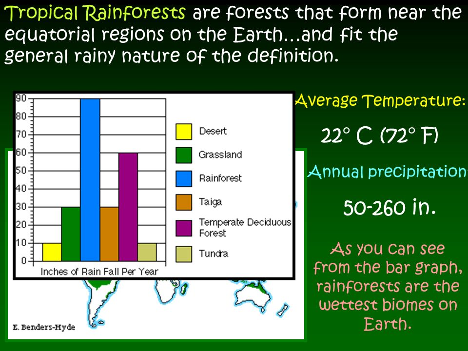 average temperature in the tropical rainforest biome