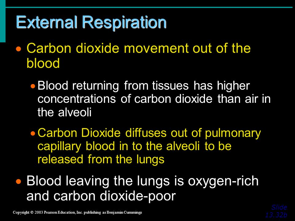 External Respiration Slide 13.32b Copyright © 2003 Pearson Education, Inc.