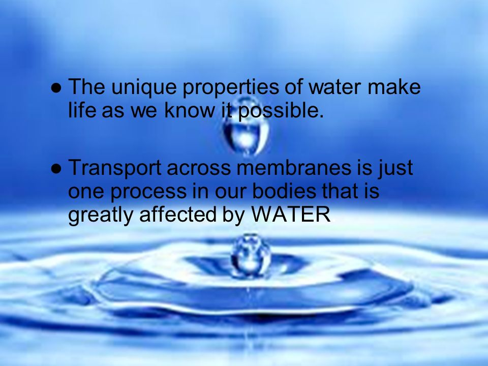 4 properties of water that make life possible