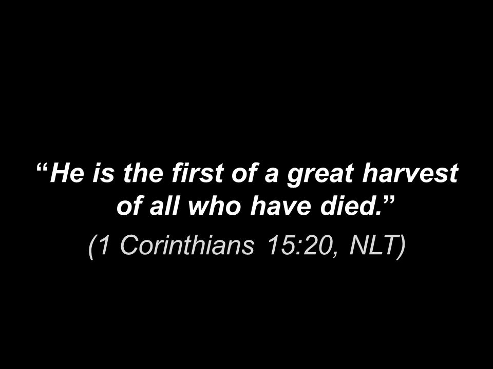 He is the first of a great harvest of all who have died. (1 Corinthians 15:20, NLT)