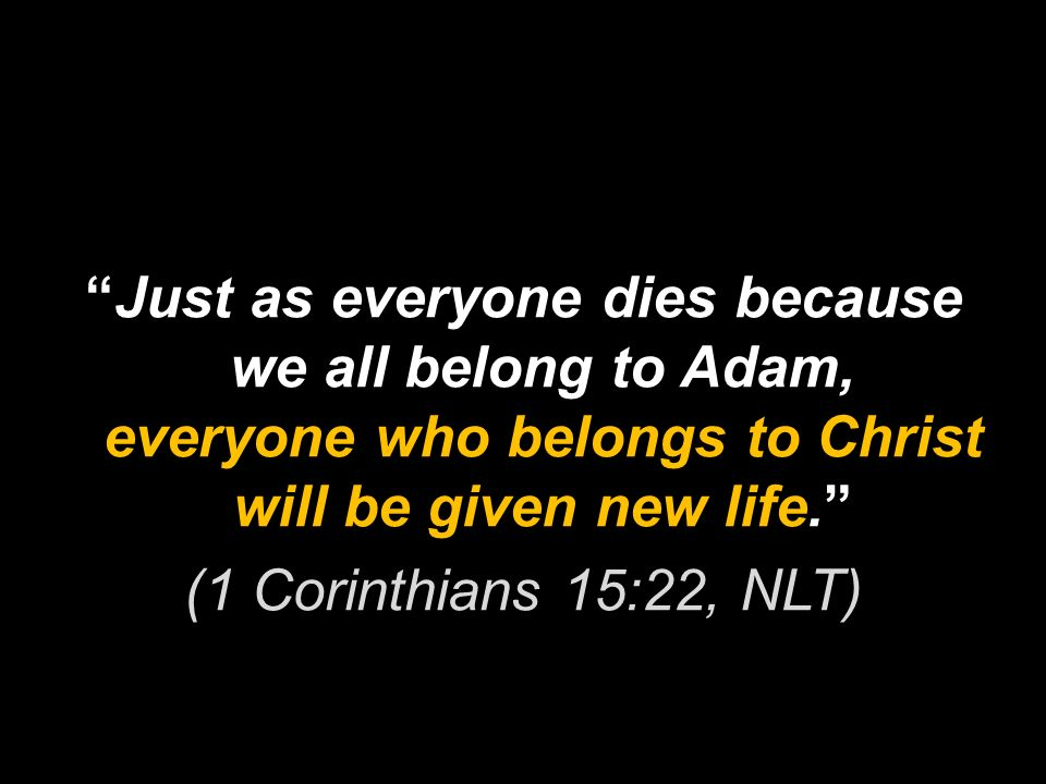 Just as everyone dies because we all belong to Adam, everyone who belongs to Christ will be given new life. (1 Corinthians 15:22, NLT)