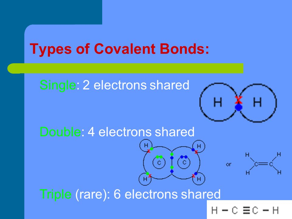 Types of Covalent Bonds: Single: 2 electrons shared Double: 4 electrons shared Triple (rare): 6 electrons shared