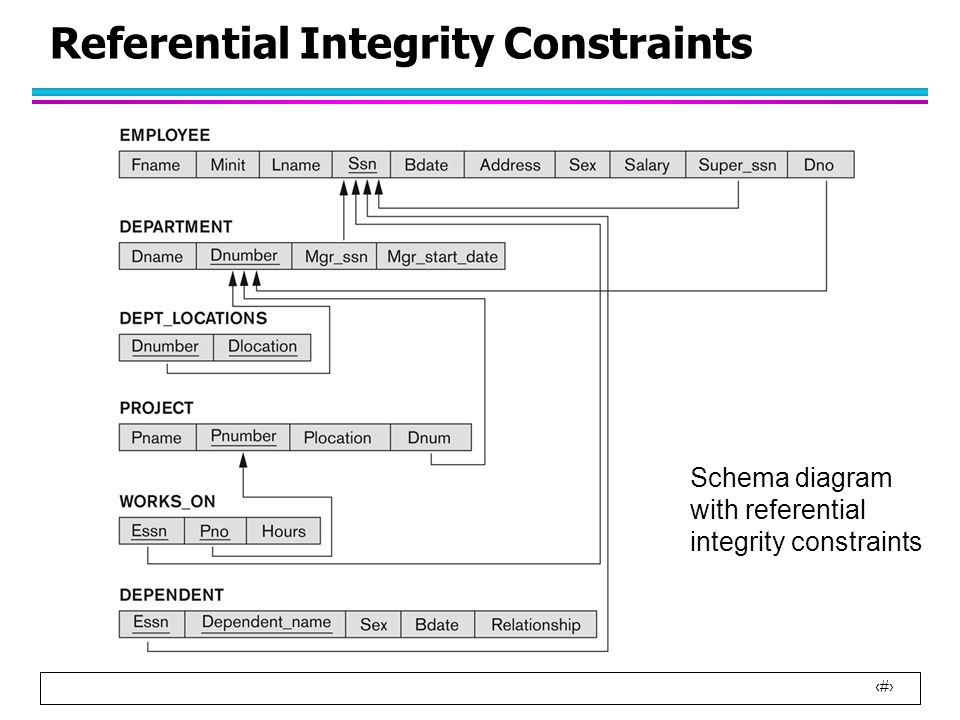 Relational Integrity Diagram Wiring Diagram Database
