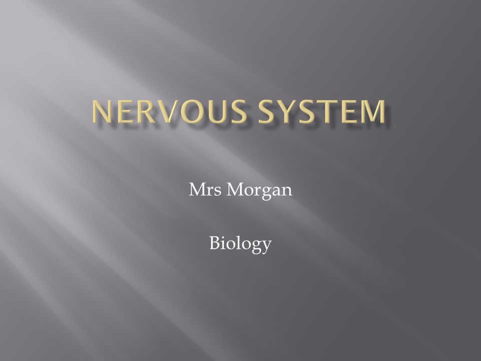 Mrs Morgan Biology